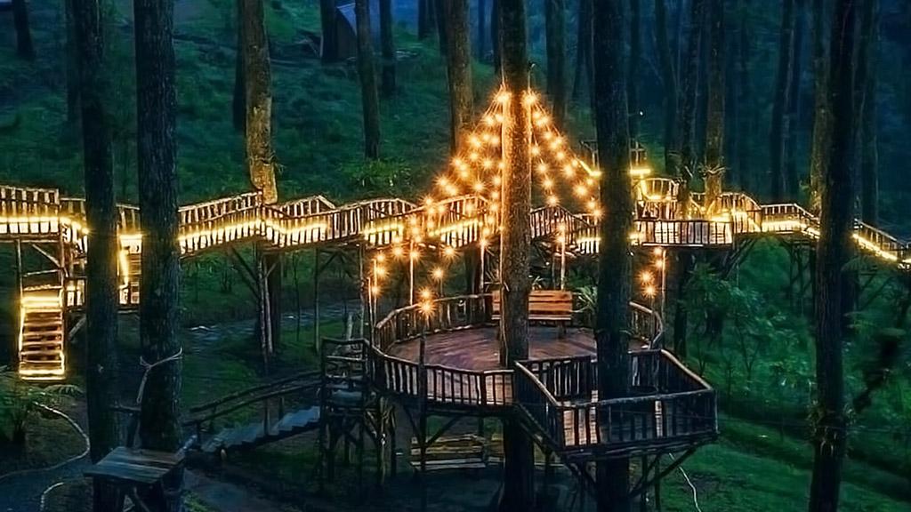 Orchid Forest Cikole - Lighting Portal